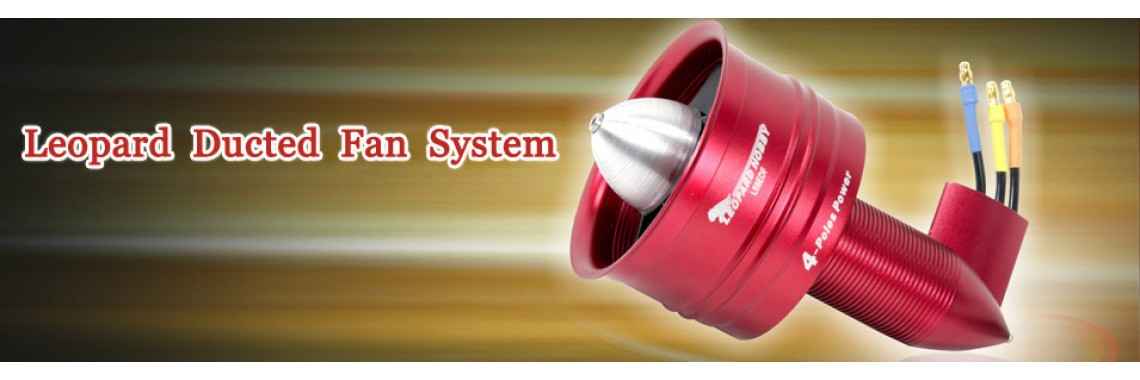 Ducted fan system